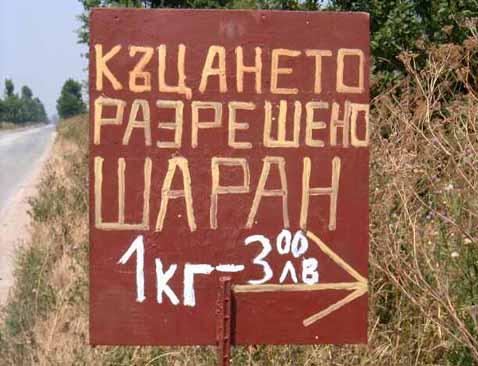 Крайпътна табела с надпис Къцането разрешено Шаран 1кг-3.00лв